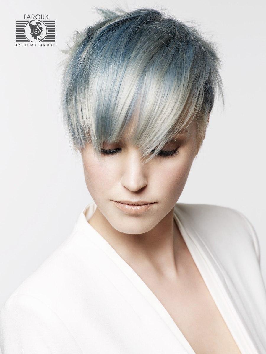 Welp Trendy korte haarsnit met zilveren en blauwe tinten ZI-11