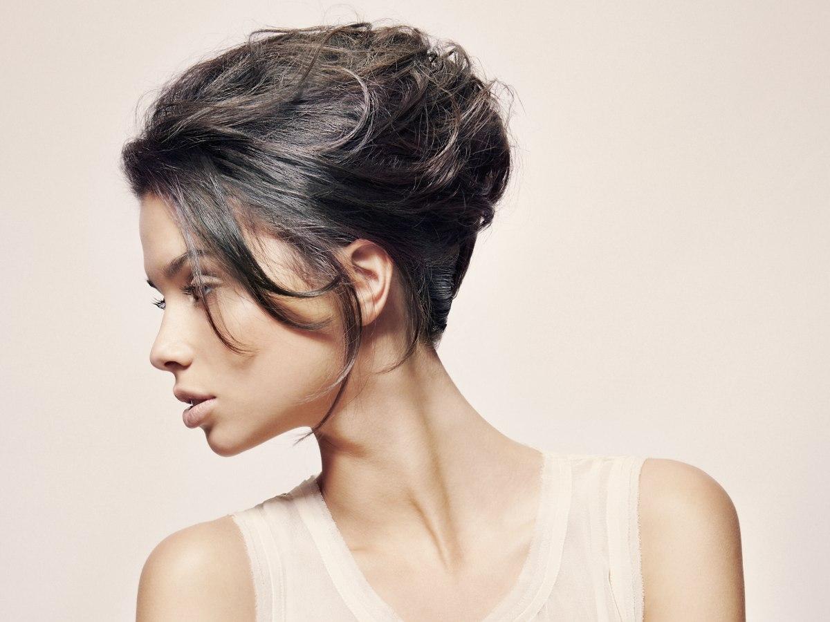 Necessary audrey hepburn french twist hairstyle